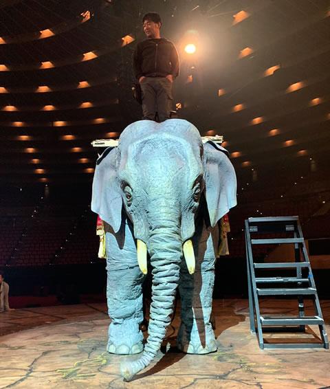 ステージに巨大な象さえ出現させてしまう